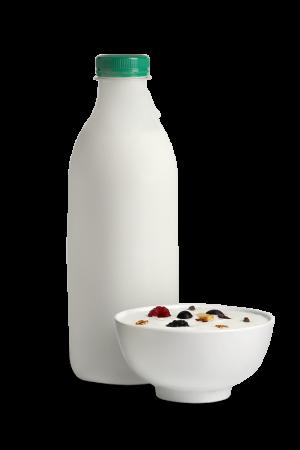 Crema de Iogurt Ecològica de la Reula